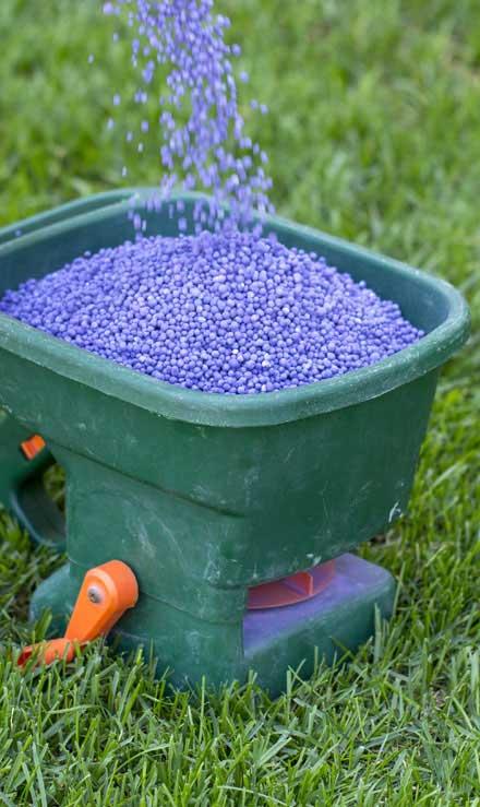 A A Green Landscaping LLC  Lawn Fertilization