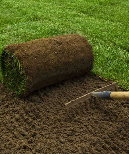 A A Green Landscaping LLC Sod Installation