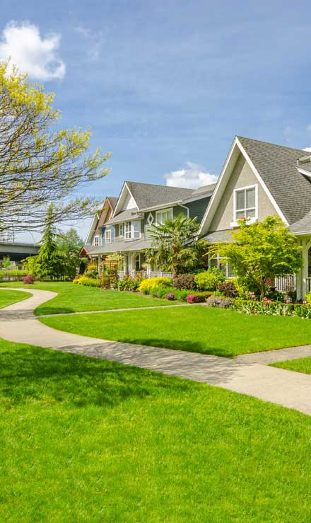 A A Green Landscaping LLC Residential Lawn Care